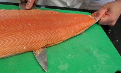 salmon-elixir